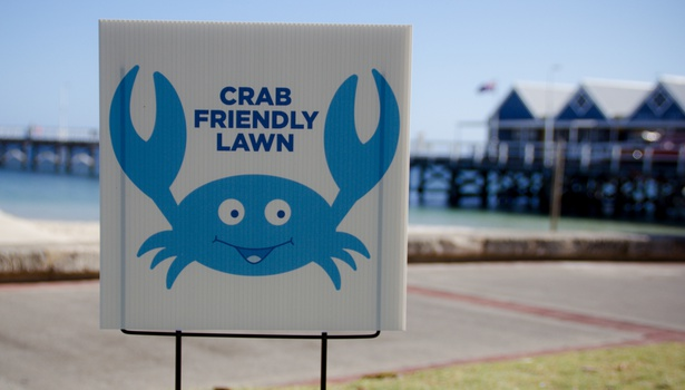 Crab Friendly Lawn Busselton