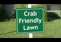 Crab Friendly Lawn