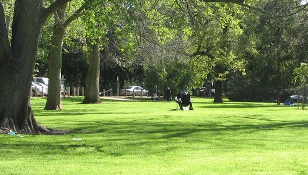 LG park