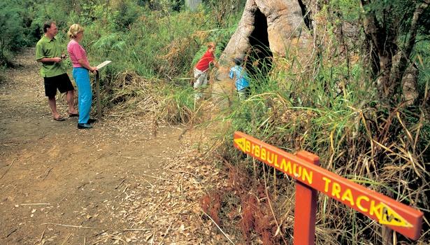 Bibbulmun-Track