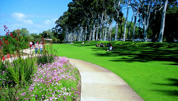 Kings Park Tourism WA