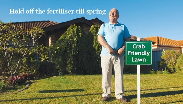 Sport a Crab-Friendly Lawn